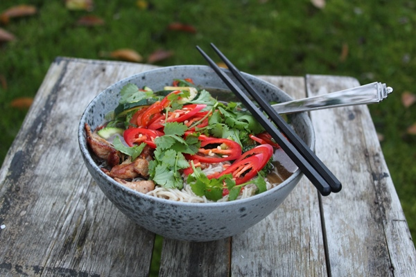 Nem Ramen Kinesisk Suppe Med Kylling Og Sprøde Grønsager
